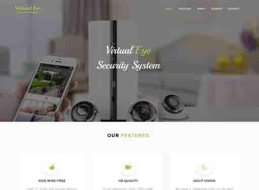 Virtual Eye System
